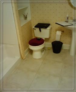 Best Bathroom Remodeling Company in Alpharetta GA - Alpharetta Ga